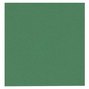 Gastro-Line lautasliina vihreä 40x40cm (100)